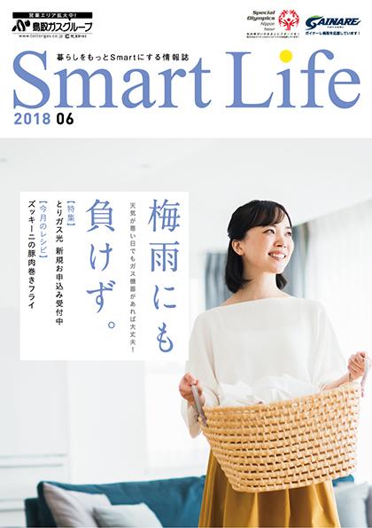 https://www.enetopia.jp/wordpress/wp-content/uploads/SL201806-fin.pdf